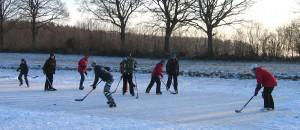 Eishockey in Negenharrie