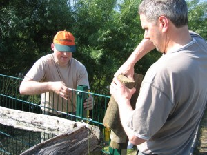 Jens und Ingo richten den Zaun aus